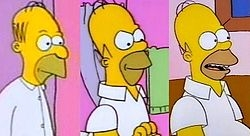 250px-Evolution_of_Homer